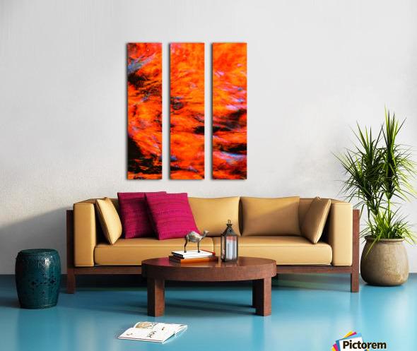 The Flock Orange Split Canvas print