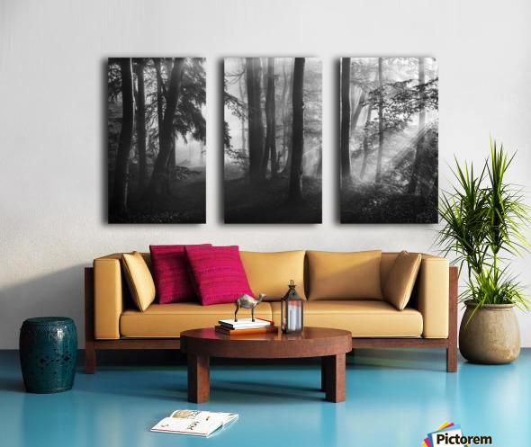 The first light... Split Canvas print