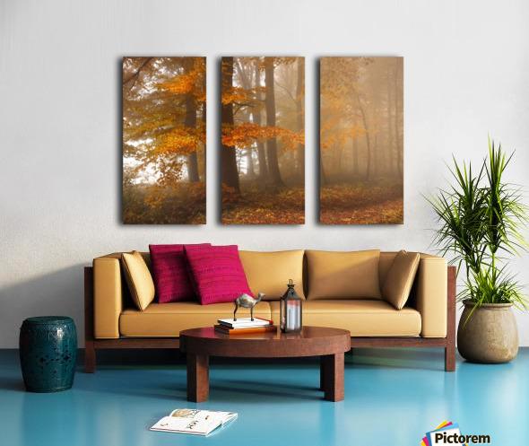 Edge of the woods Split Canvas print