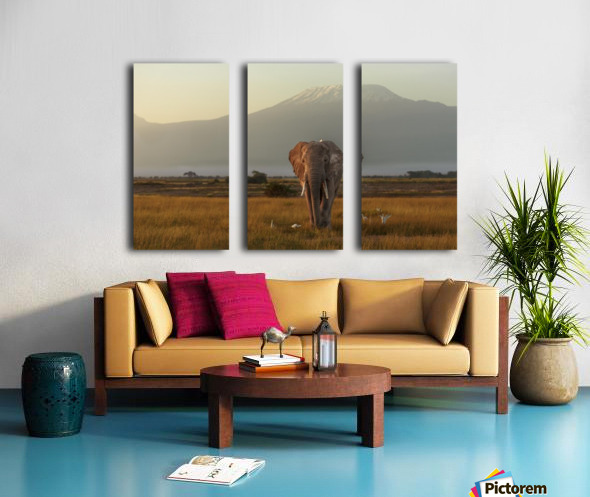 Under the roof of Africa Split Canvas print
