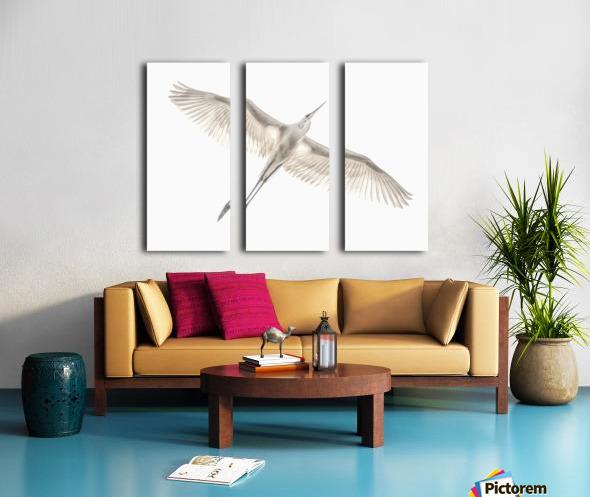 Fly Split Canvas print