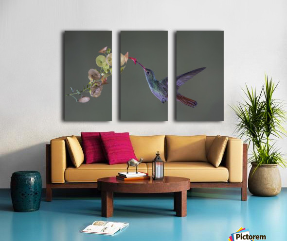 Stretch Split Canvas print