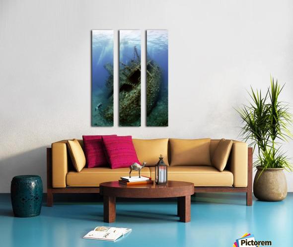 Giannis D wreck. Split Canvas print