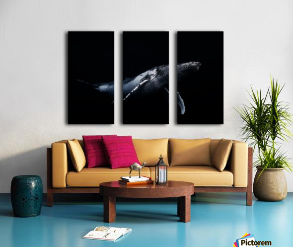 Black & Whale Split Canvas print