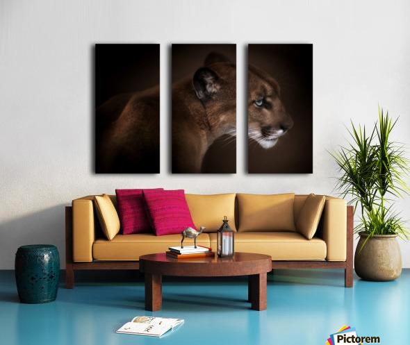 Puma Split Canvas print