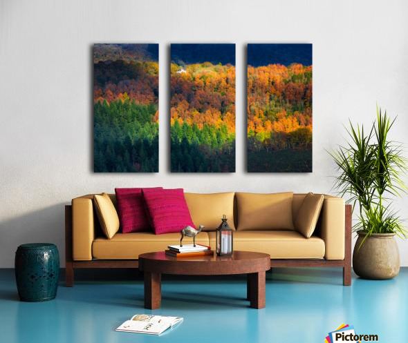 Amongst the trees Split Canvas print