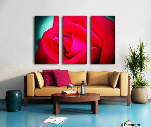 Pink Rose Split Canvas print