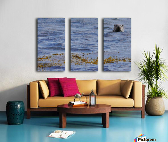 Watching Otter Split Canvas print