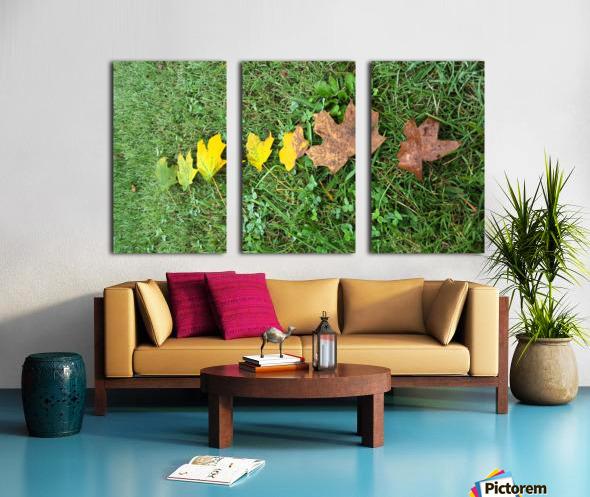 Lifespan Split Canvas print