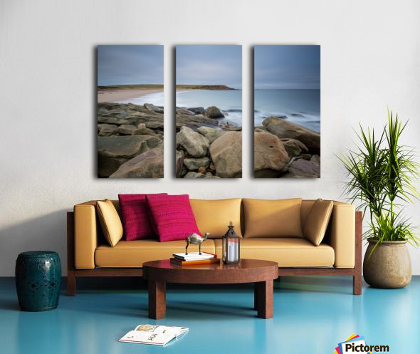 Sands of Whale Cove Split Canvas print