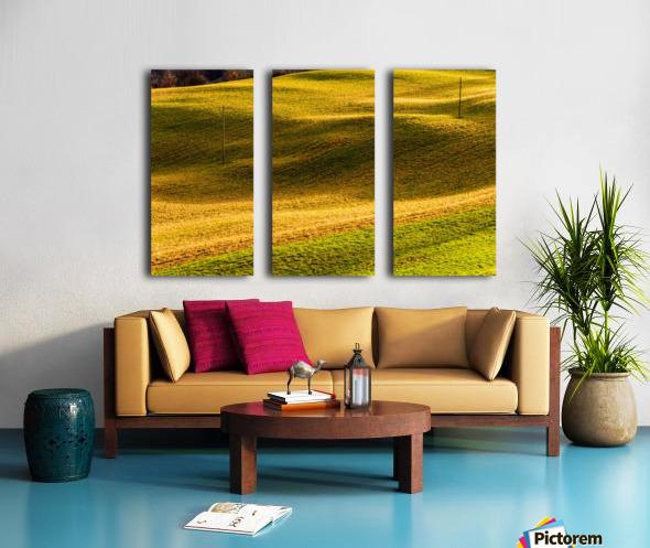 Toano 2 Split Canvas print