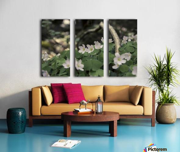 bokeh Split Canvas print