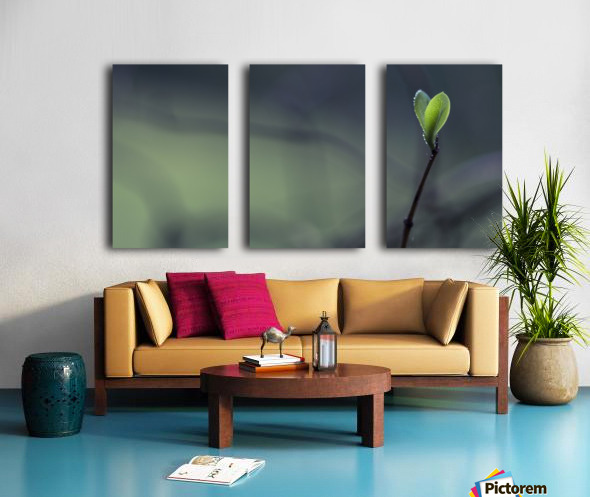 . Split Canvas print