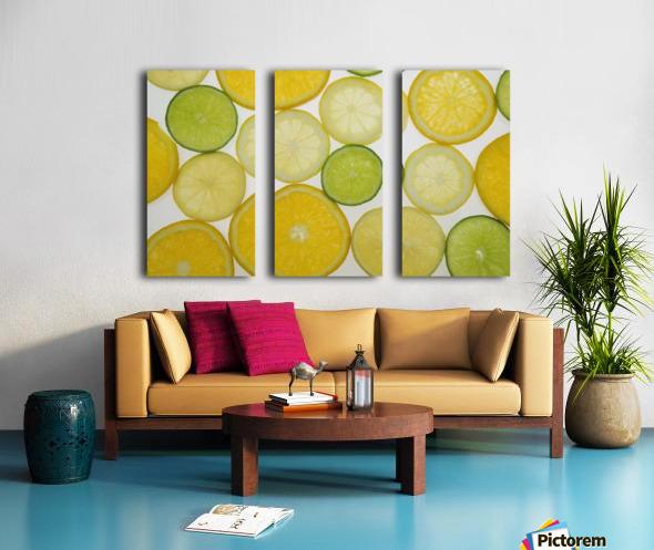 Citrus Slices Split Canvas print