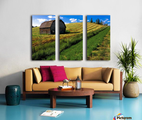 Old Barn In A Field Split Canvas print