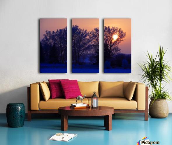 Sun Peeking Through Some Trees Split Canvas print