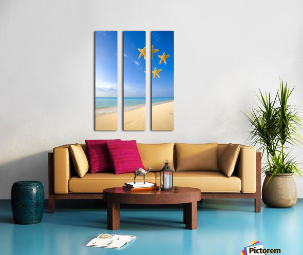 Starfish Falling In Front Of The Ocean Split Canvas print