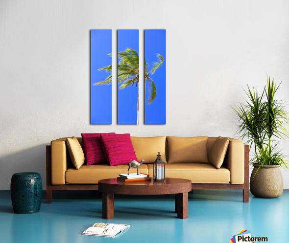 Palm Tree Against Clear Blue Sky Split Canvas print