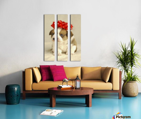 Puppy Wearing A Red Bow Split Canvas print