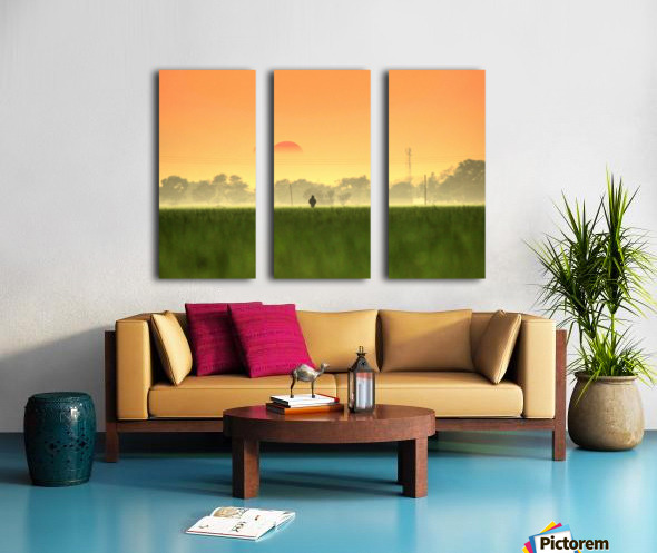 Glamorous  Split Canvas print