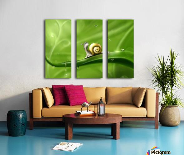 Snail Split Canvas print