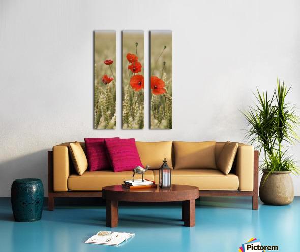 Wildflowers; Poppies In A Grain Field Split Canvas print