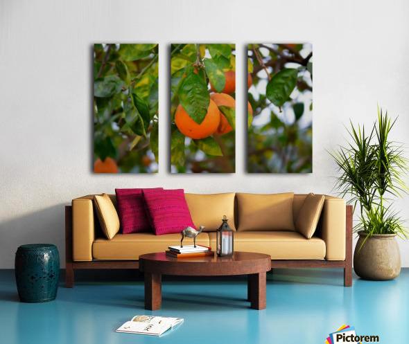 Oranges Split Canvas print