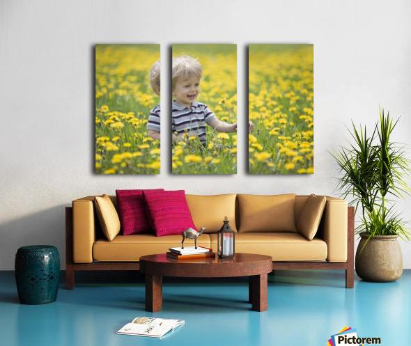 18-Month-Old Boy In Dandelion Field; Thunder Bay, Ontario, Canada Split Canvas print
