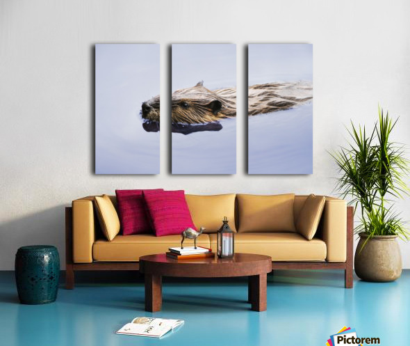 View Of Beaver, Chaudiere-Appalaches Region., Quebec, Canada Split Canvas print