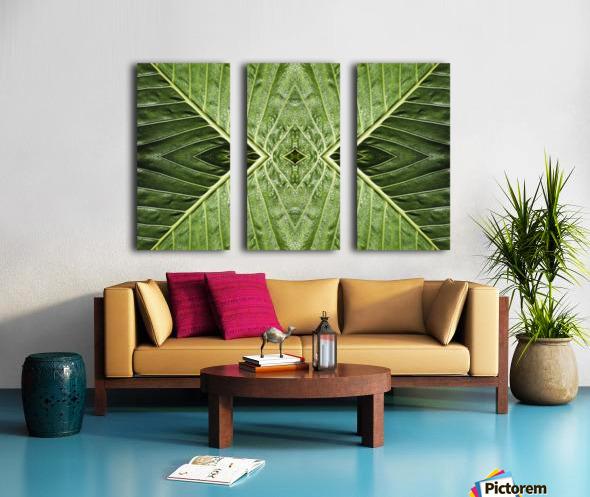 Close up of vein patterns in leaves;Gold coast queensland australia Split Canvas print