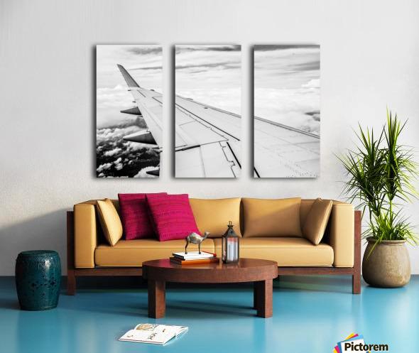 Airplane Wing Split Canvas print