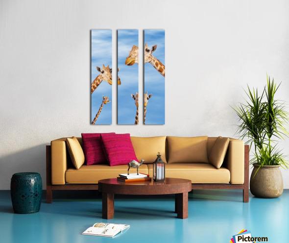 Four giraffes looking downward;Africa Split Canvas print