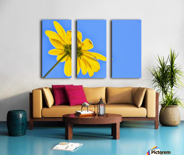 Yellow flower against a blue sky; Bolivia Split Canvas print
