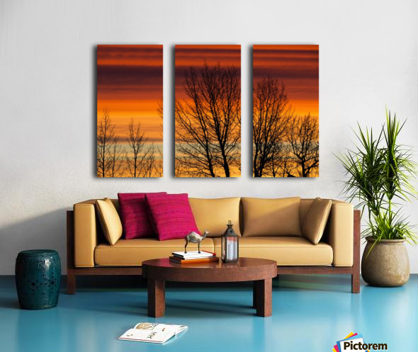 Silhouetted tree branches with dramatically colourful clouds at sunrise; Calgary, Alberta, Canada Split Canvas print