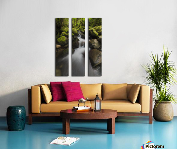 Ruckel Creek; Oregon, United States of America Split Canvas print