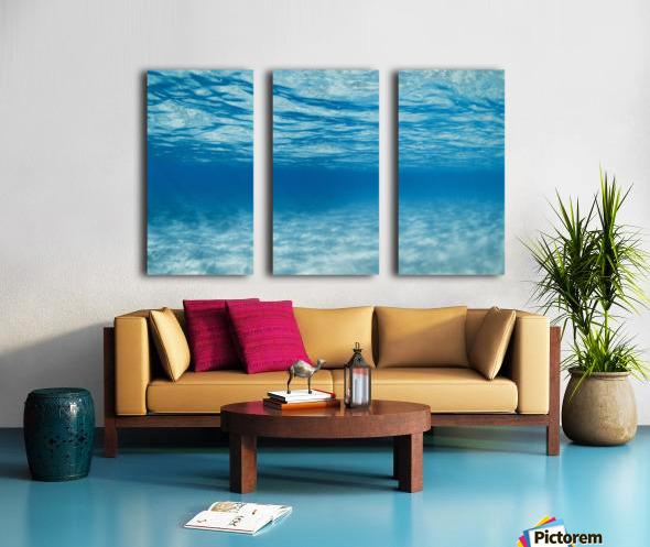Underwater Split Canvas print