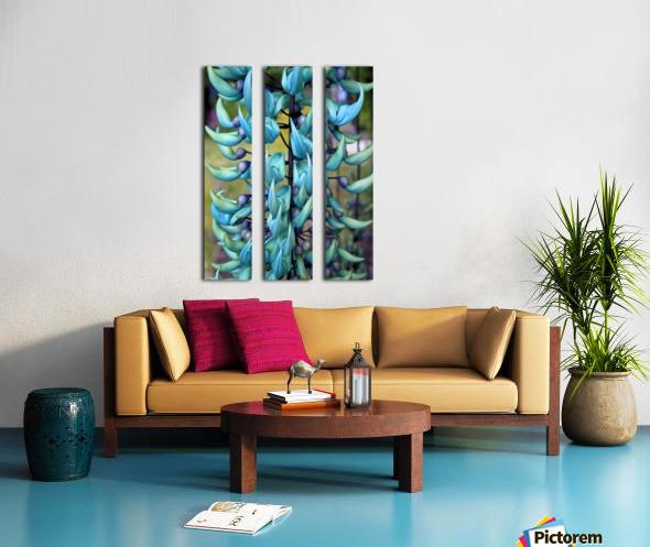 Blue jade plant; Hawaii, United States of America Split Canvas print