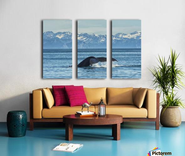 Humpback whale (Megaptera novaeangliae) in Seward harbour; Seward, Alaska, United States of America Split Canvas print