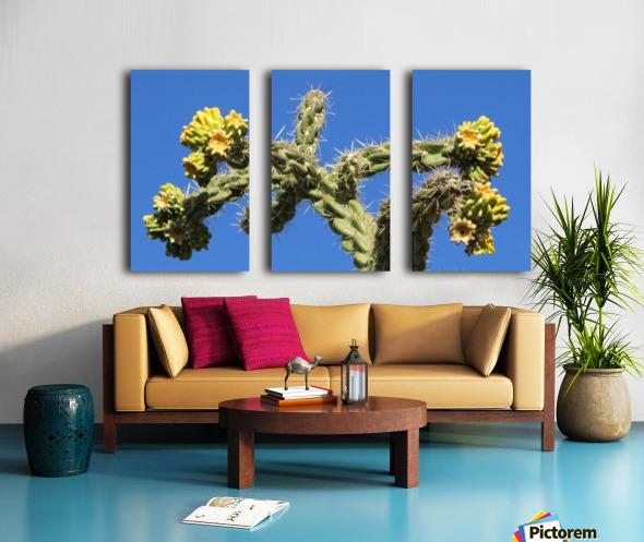 Cactus in bloom Split Canvas print