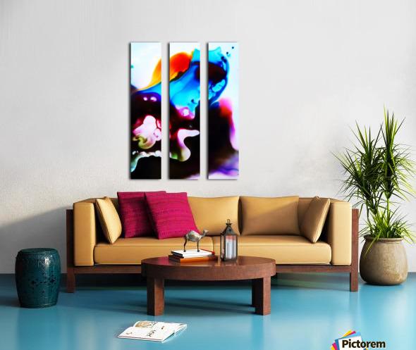 MPS-008 Split Canvas print