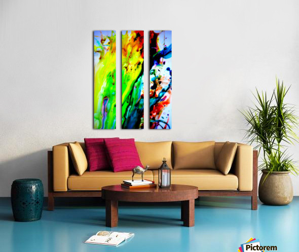 MPS-011 Split Canvas print
