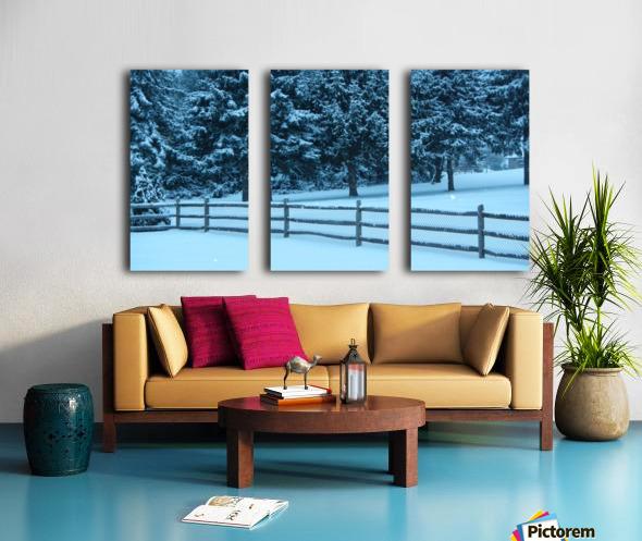 Winter Snow Split Canvas print