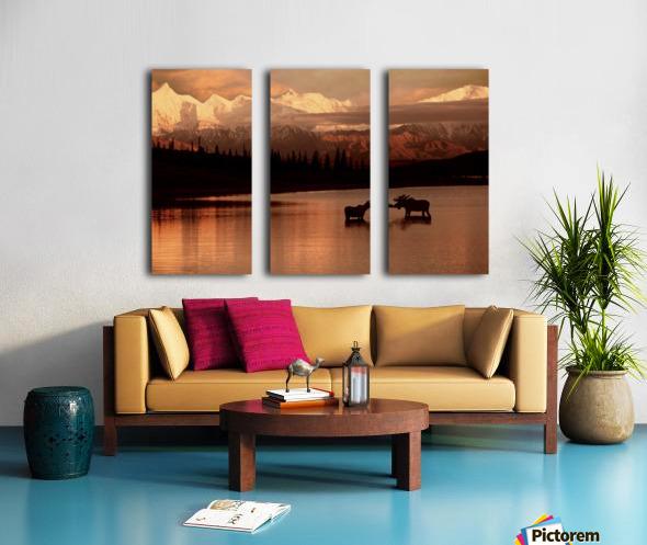 Moose Kissing Split Canvas print