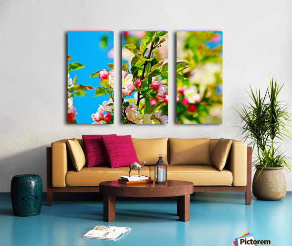 Colors of Spring Split Canvas print