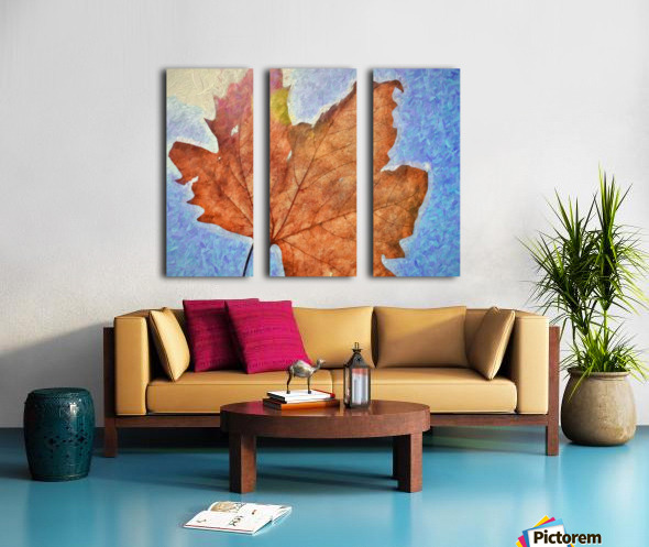 Autumn Leaves Macro 3 Abstract 3 Split Canvas print