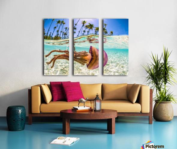 Stow Away Split Canvas print