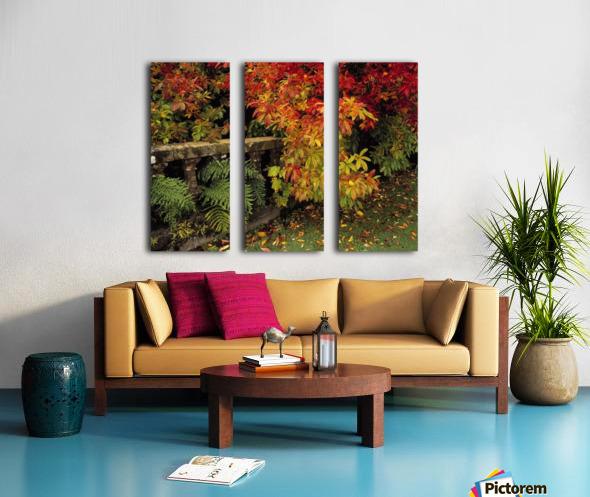 Balustrades & Autumn Colours, Castlewellan, Co Down, Ireland Split Canvas print