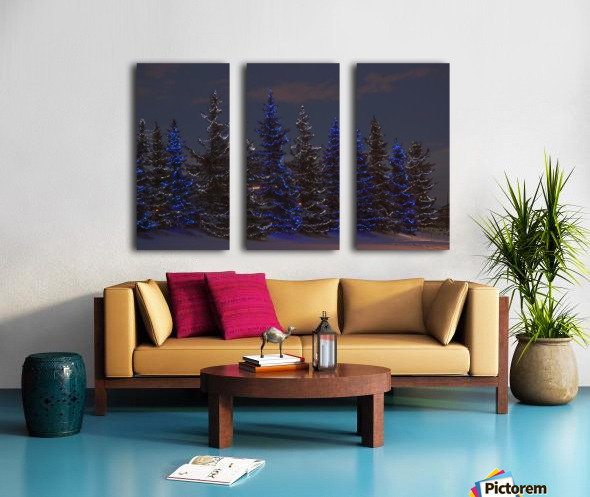 Calgary, Alberta, Canada; A Row Of Evergreen Trees With Christmas Lights Split Canvas print
