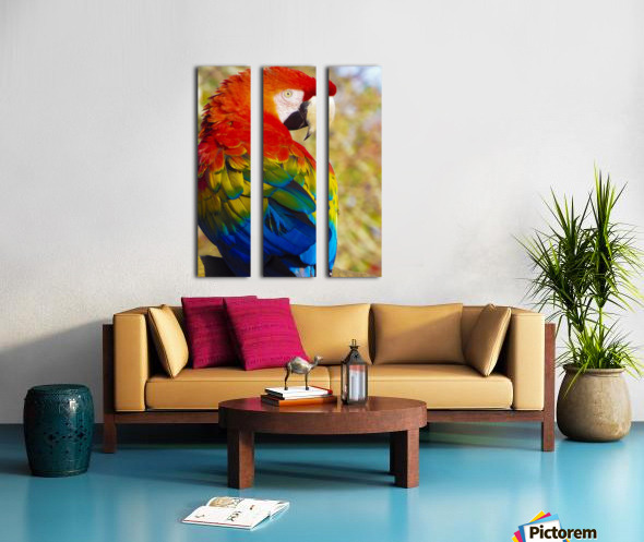 All the Colors of the Rainbow Split Canvas print