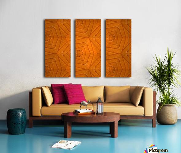 IMG_5036 Split Canvas print